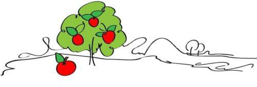 Яблоко от яблони...